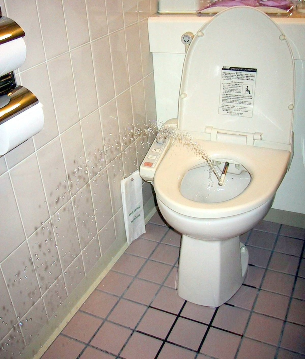 Japanese Toilet Attack